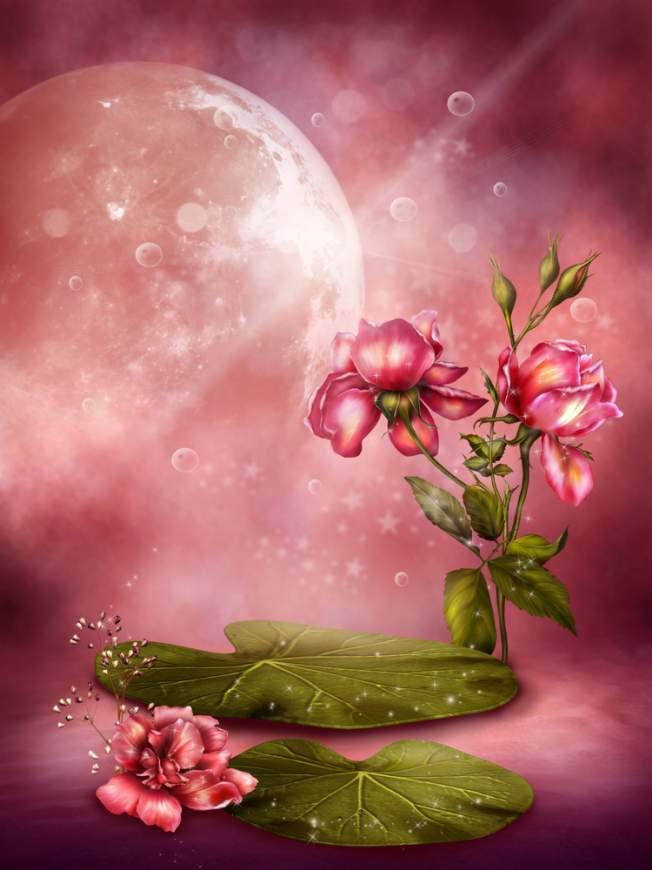 luna plina, luna plina in scorpion, luna roz