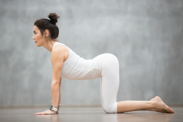 yoga, pozitia vaca
