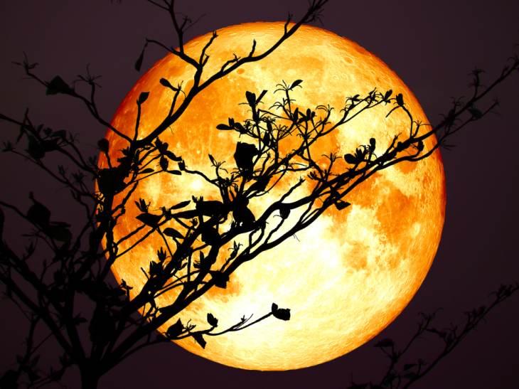 Luna plina, luna plina in Fecioara