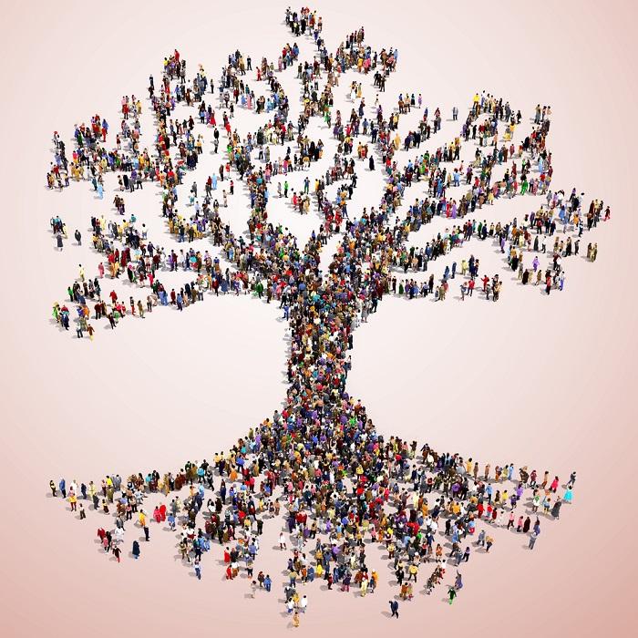 arbore genealogic, stramosi