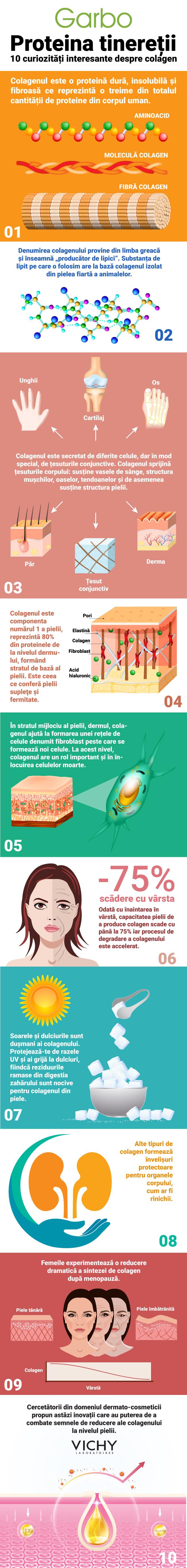 infografic, curiozitati despre colagen