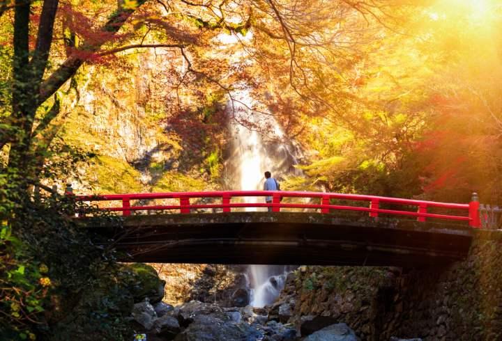 Japonia toamna