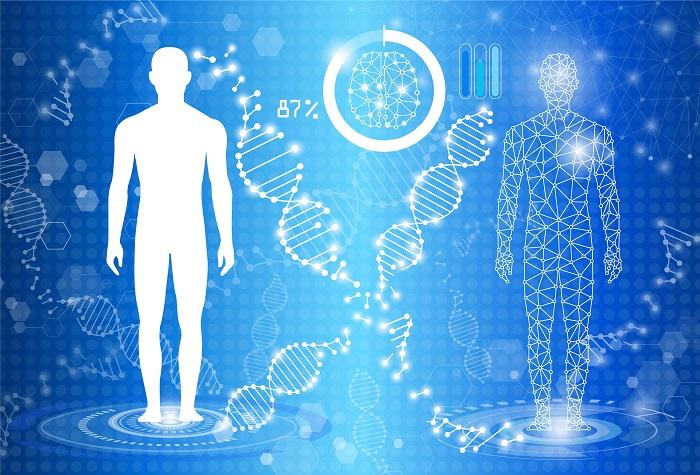 vindecare celule, ADN