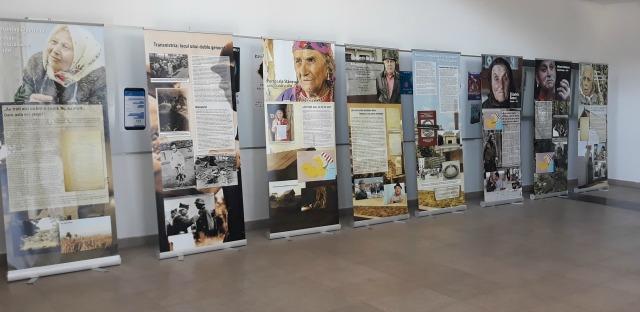 istoria genocidului romilor, holocaustul romilor din Romania