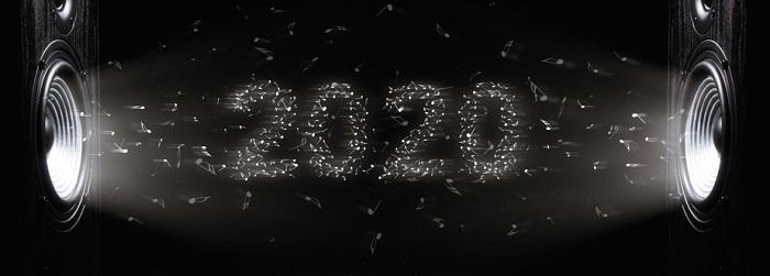 anul 2020
