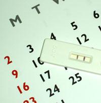 Calendarul reproducerii