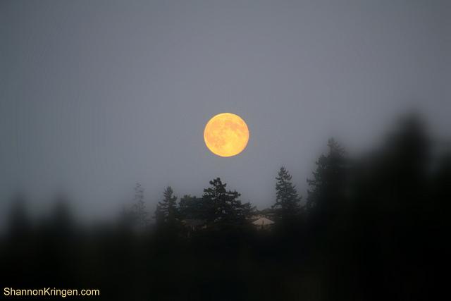 Eclipsa de Luna SANGERIE – 28 septembrie: Cel mai mare eveniment astrologic al anului!