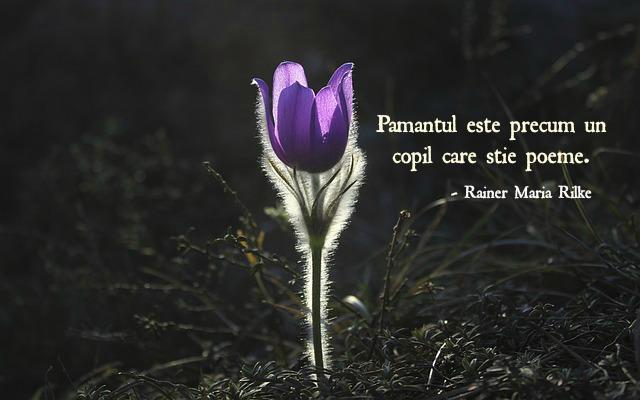 Primavara, citat, Rainer Maria Rilke