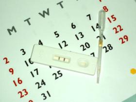 Calculul ovulatiei - perioada fertila, metoda calendarului, temperatura bazala, mucus cervical si test de ovulatie
