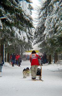 idei de distractie pentru vacanta de iarna a copiilor