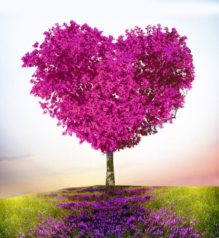 Iubire, Iubirea a spus, Rumi