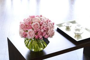 Plante de toamna: trandafiri