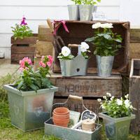 Practic: 5 idei inedite de a depozita florile