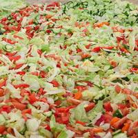 Record Mondial: salata de 19.05 tone