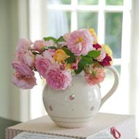 Despre ceainice, cu dragoste. 6 intrebuintari originale