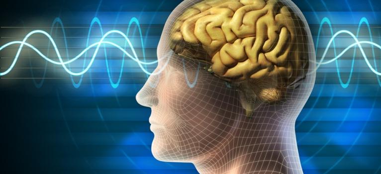 Norman Doidge: Creierul stie sa te vindece!