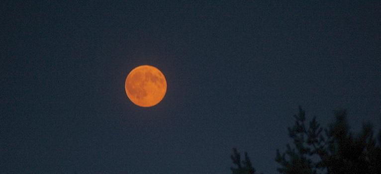 29 August – Apocalipsa Emotionala: Luna Plina in Pesti