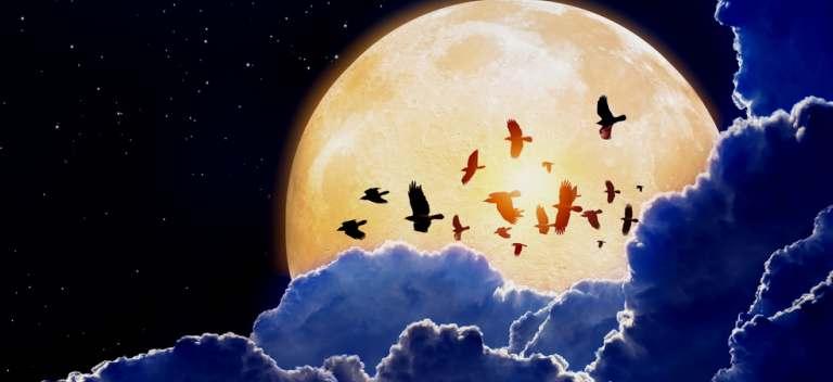 14 decembrie 2016: Ultima Super Luna a anului este in Gemeni si are o Energie Astrala covarsitoare!