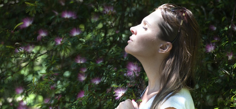 Recomandare de carte: Calmul inseamna sanatate