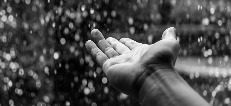 Un inger argintiu in ploaie