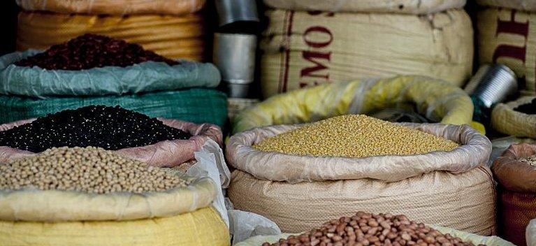 7 legume si o sursa inepuizabila de proteine de buna calitate