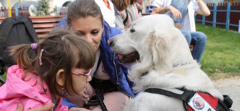 Terapia cu animale la 'Doctor cu patru labute'