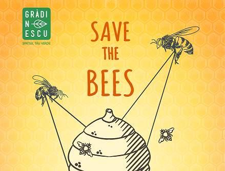 Kaufland Romania organizeaza ateliere de apicultura pentru copii, in cadrul proiectului Gradinescu