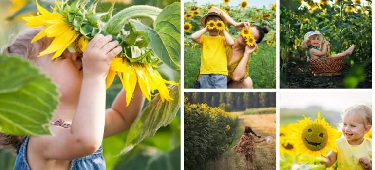 Copii fericiți în lanul de Floarea-Soarelui: 21 de Imagini minunate care te fac să retrăiești copilăria