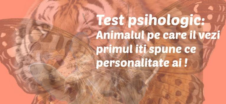 TEST PSIHOLOGIC: Animalul pe care îl vezi primul îți spune ce personalitate ai!