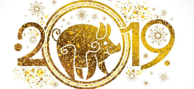 A început Anul Chinezesc al Mistrețului de Pământ! Stabilitate, energie telurică, mai multă compasiune și noroc până în 2020!