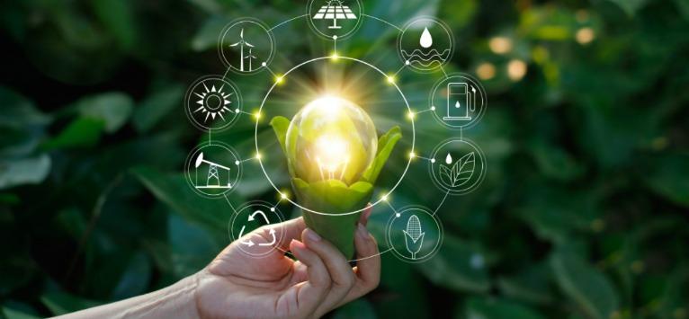 Greenpeace: Prosumatorul, o nouă specie de consumatori de energie apare în România!