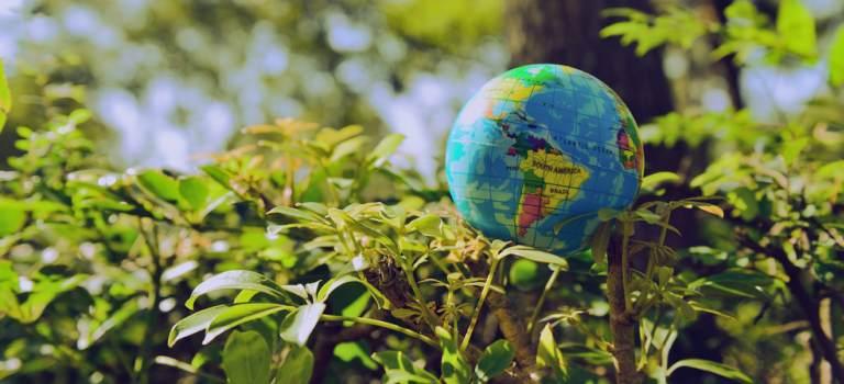 Planeta Noastră, serialul de istorie naturală va fi lansat pe 5 aprilie