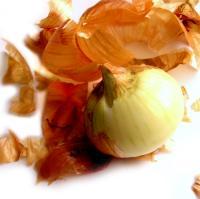 Ceapa, leguma cenusareasa din bucatarie