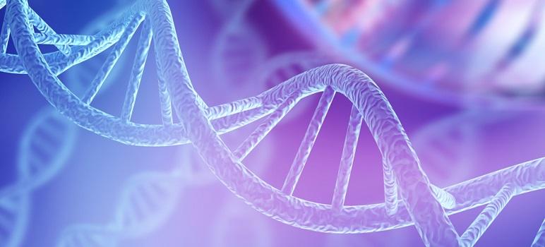 Cuvintele utilizate ne influențează ADN-ul