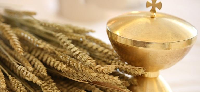 14 iunie - Sfântul proroc Elisei, succesorul în har al sfântului Ilie: Tradiții de Eliseiul grâului