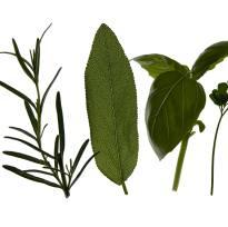 Farmacia din ghiveci: proprietatile medicinale ale mirodeniilor
