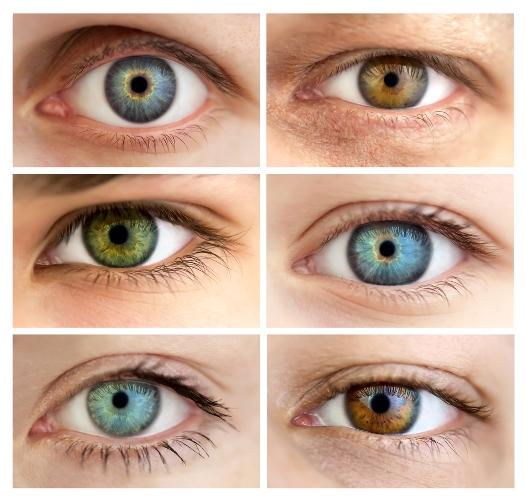 descoperire stiintifica ochii sunt oglinda sufletului. Black Bedroom Furniture Sets. Home Design Ideas