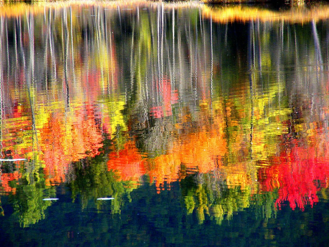 Toamna, esti minunata! 23 de imagini care ne aduc toamna in suflet ♥♥♥: Culorile toamnei reflectate in apa