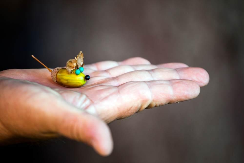 ATELIERUL DE CREATIE: 22 de idei pentru a realiza impreuna cu micutul tau adevarate Minunatii de Toamna: Soricelul din ghinda