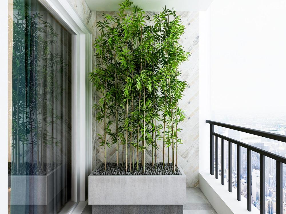 Balconul, oaza zilnica de relaxare. 16 Idei ca sa aduci natura pe balconul tau: Paduricea din ghiveci