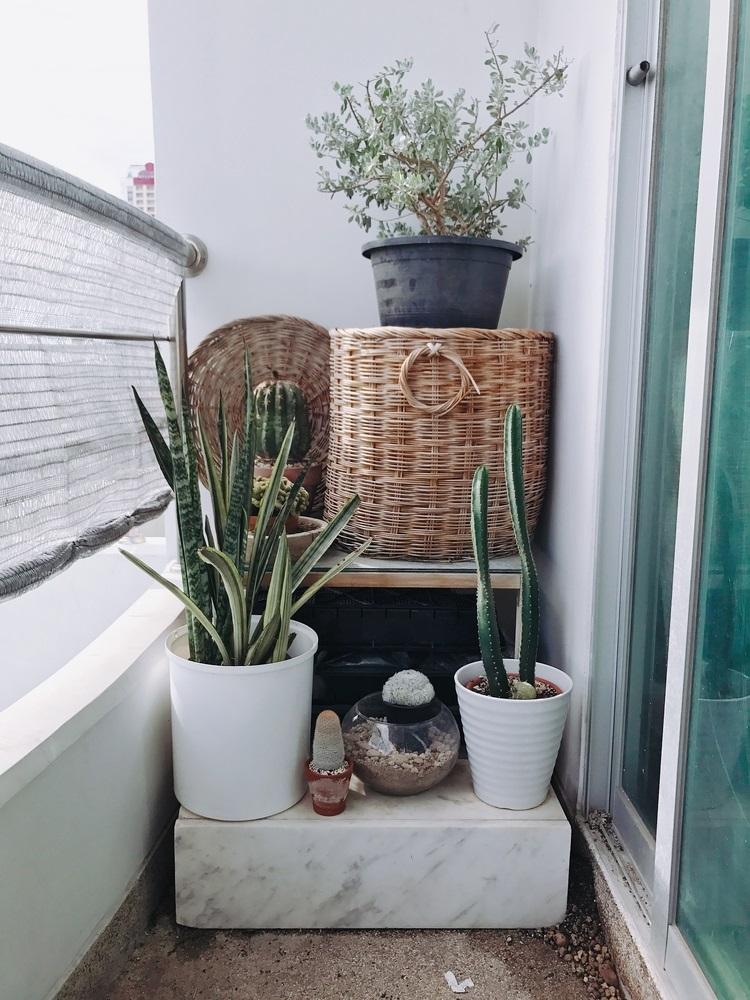 Balconul, oaza zilnica de relaxare. 16 Idei ca sa aduci natura pe balconul tau: Coltul de gradina de pe balcon