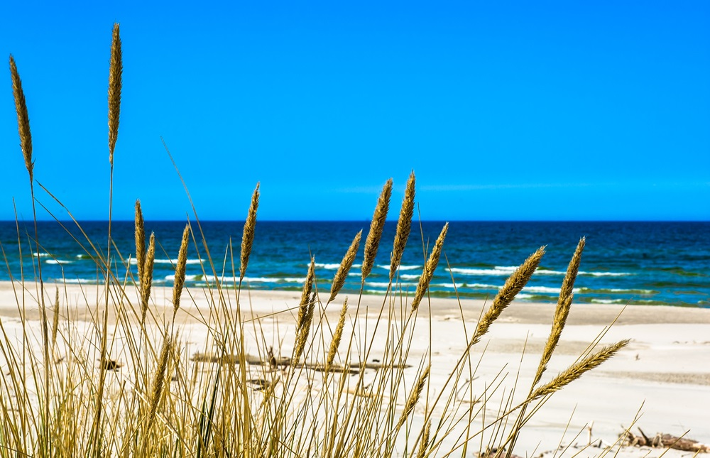 Vara -cel de-al treilea Rai al anului: 19 Imagini mirifice cu vara fermecata: Plaja pustie, mare albastra...