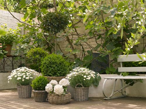 Practic: 5 idei inedite de a depozita florile: Cosuri impletite